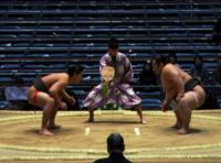 A Normal Life. Chronicle of a Sumo Wrestler