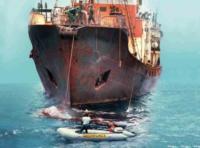 Greenpeace: The Story