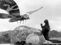 Mothra Vs.Godzilla