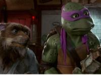 The Teenage Mutant Ninja Turtles III