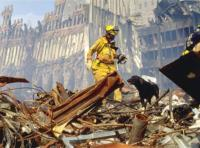 Hero Dogs of 9/11 (Documentary Special)
